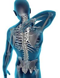 how chiropractic works