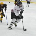 A Few Tips for Hockey Season