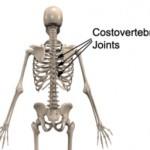 Costo-Vertebral Pain